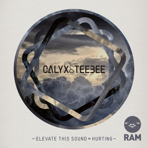 Elevate This Sound / Hurting