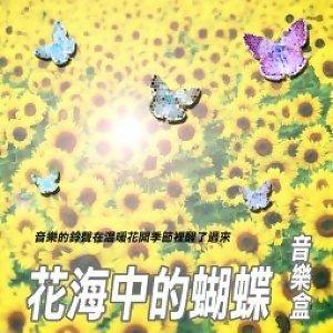 花海中的蝴蝶音樂盒