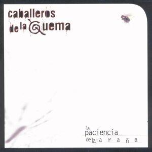 Vinyl Replica: La Paciencia De La Araña