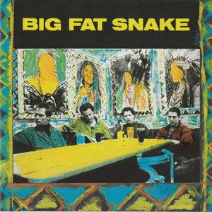 Big Fat Snake