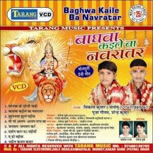 Baghva Kaile Baa Navratar