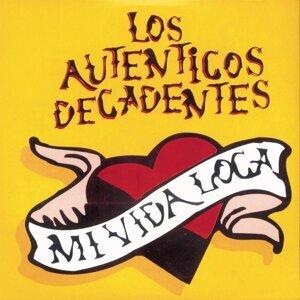 Vinyl Replica: Mi Vida Loca