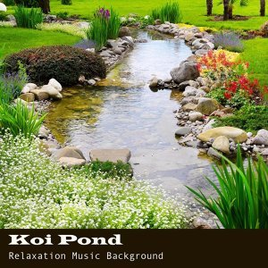 Koi Pond Relaxation Music Background 4 Health and Wellbeing