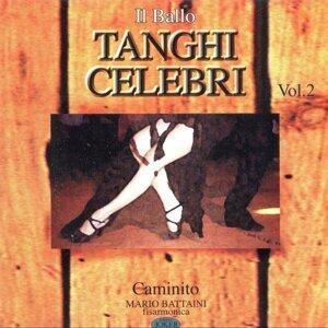Il Ballo Tanghi Celebri Vol. 2 (Caminito)