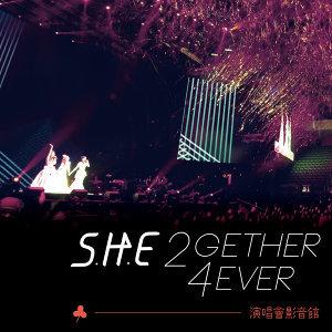 S.H.E 2gether 4ever World Tour 2013演唱會
