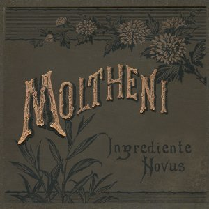 Ingrediente novus