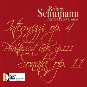 Robert Schumann: Works for Piano