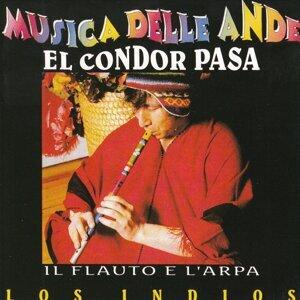 Musica delle Ande: El Condor Pasa