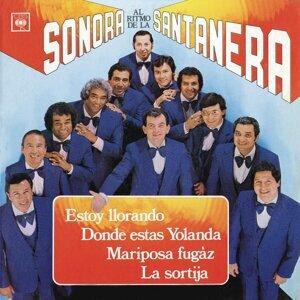 Al Rítmo De La Sonora Santanera