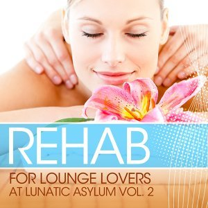 Rehab for Lounge Lovers At Lunatic Asylum, Vol. 2