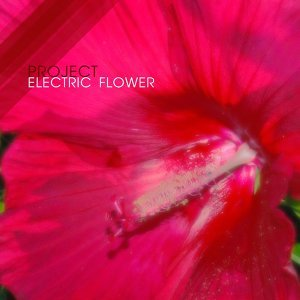Project Electric Flower