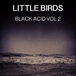 Black Acid, Vol. 2