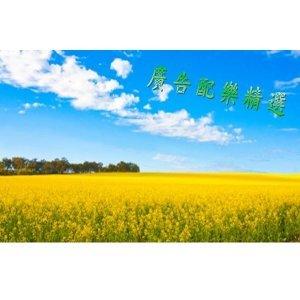廣告配樂精選10