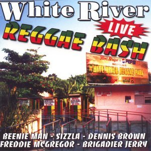 White river reggae bash (live)
