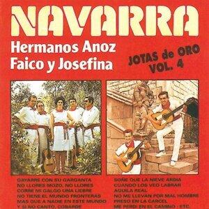 Jotas de Oro - Navarra