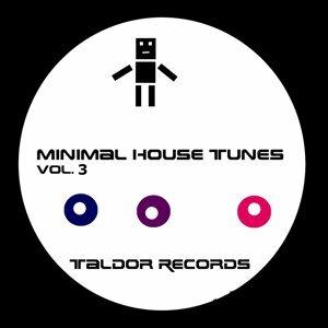 Minimal House Tunes, Vol. 3