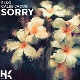 Sorry (feat. Caleb Jacob)