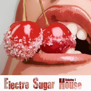 Electro Sugar House, Vol. 1