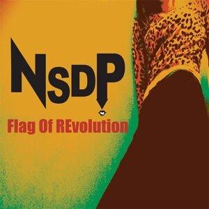 Flag Of Revolution