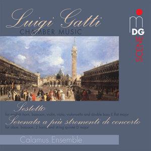 Gatti: Chamber Music