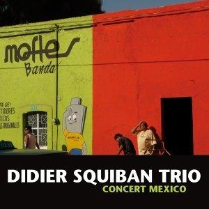 Didier Squiban Trio : concert à Mexico (2008)