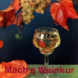 Mach e Weinkur