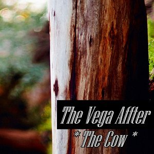 The Vega Affter