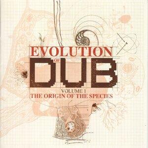 The Evolution Of Dub Vol. 1: The Origin
