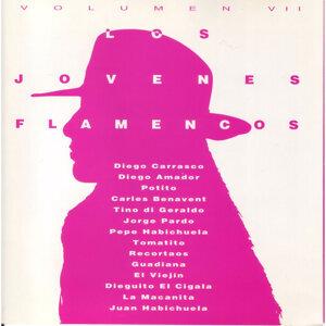 Los Jóvenes Flamencos - Vol. 7