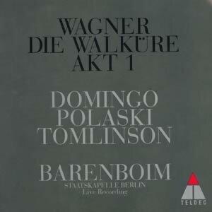 Wagner: Die Walkure 1. Akt