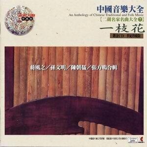 中國音樂大全之二胡名家名曲大全7 -一枝花