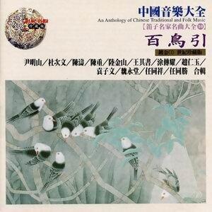 中國音樂大全之琵琶名家名曲大全10 -百鳥引