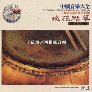 中國音樂大全之琵琶名家名曲大全5 -飛花點翠
