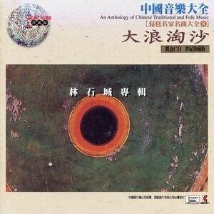 中國音樂大全之琵琶名家名曲大全8 -大浪淘沙