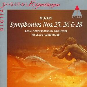 Wolfgang Amadeus Mozart: Symphony No 25