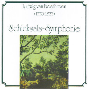 Ludwig van Beethoven - Schicksalssymphonie