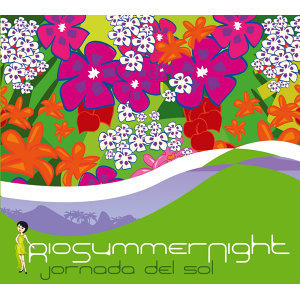 Rio Summer Night
