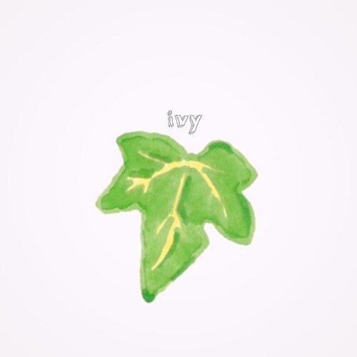 アイビー (Ivy)
