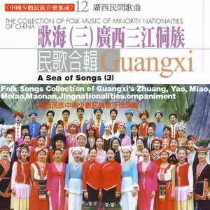 中國少數民族音樂集成12