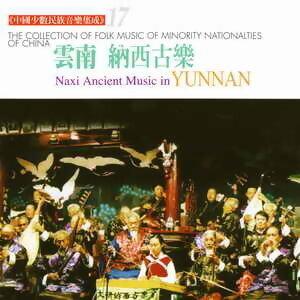 中國少數民族音樂集成17
