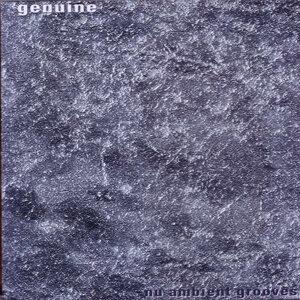 Nu Ambient Grooves