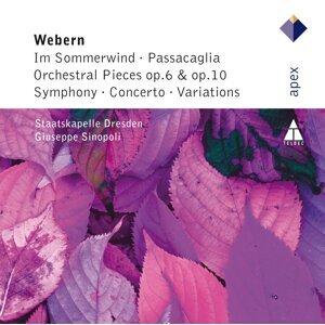 Webern : Im Sommerwind, Orchestral Works & Variations - APEX