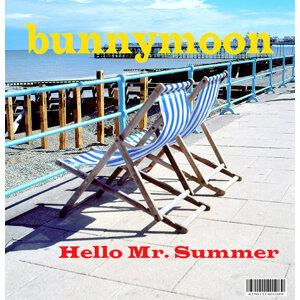 Hello Mr. Summer
