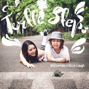 Turtle Steps (Turtle Steps)