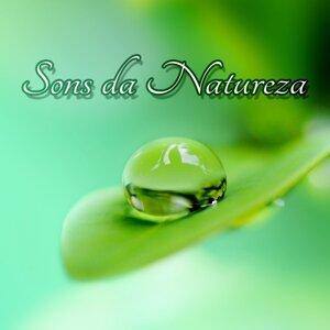 Sons da Natureza - Meditação e Espiritualidade New Age, Canciones para Dormir, Música para Relaxar, Estresse e Sono, Musica Relajante, Bem Estar, Pensamento Positivo, Relaxamento