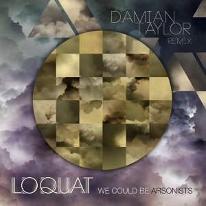 We Could Be Arsonists [Damian Taylor Remix]