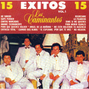 15 Exitos, Vol. I