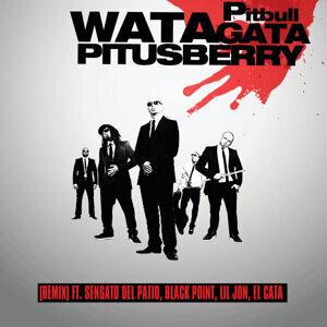 Watagatapitusberry