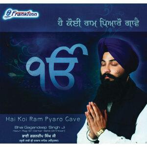 Hai Koi Raam Piyaro Gave