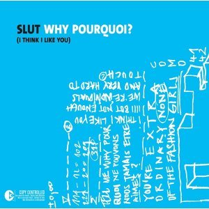 Why Pourquoi (I Think I Like You)